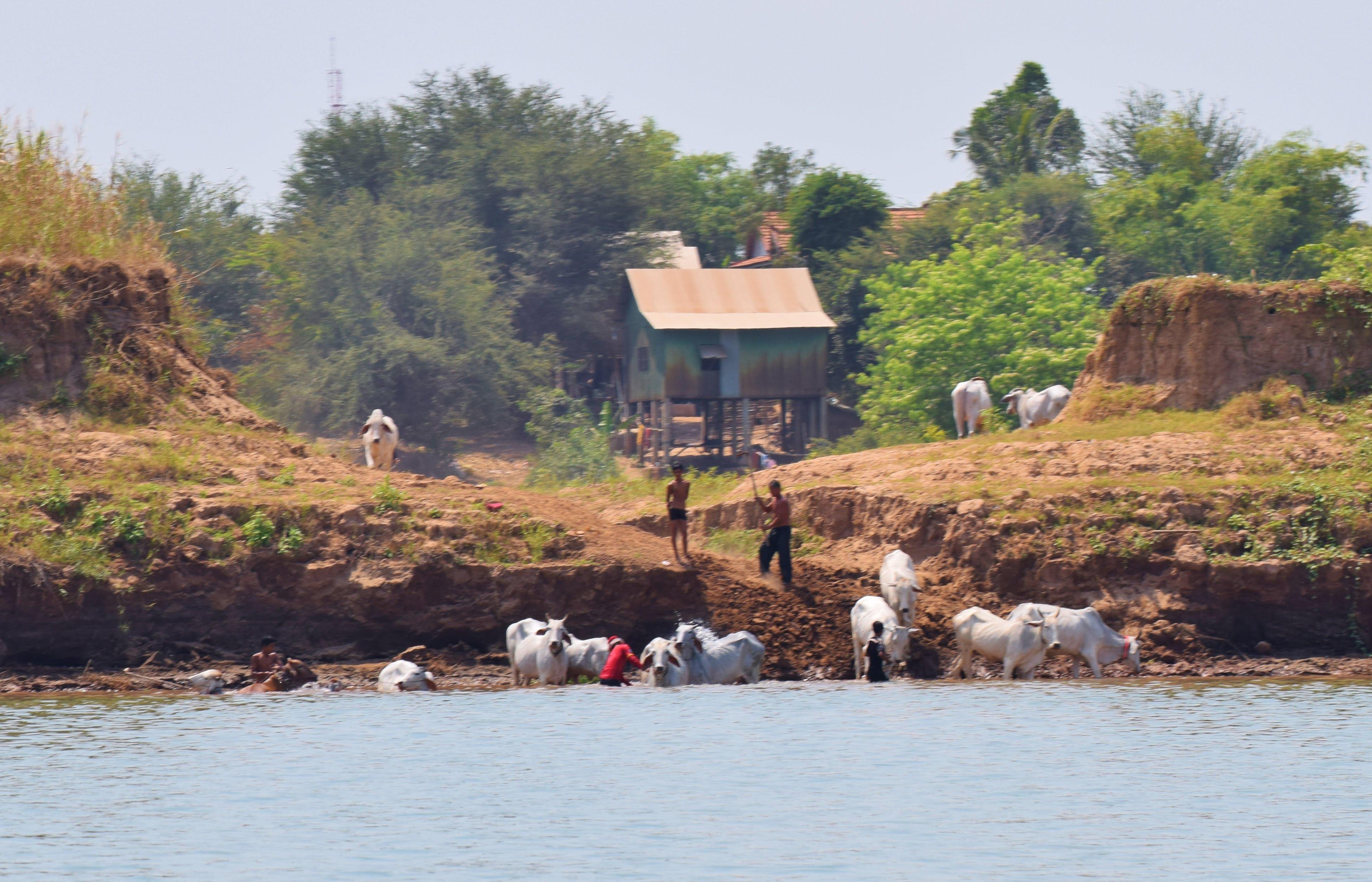Cambodge - En bateau rapide