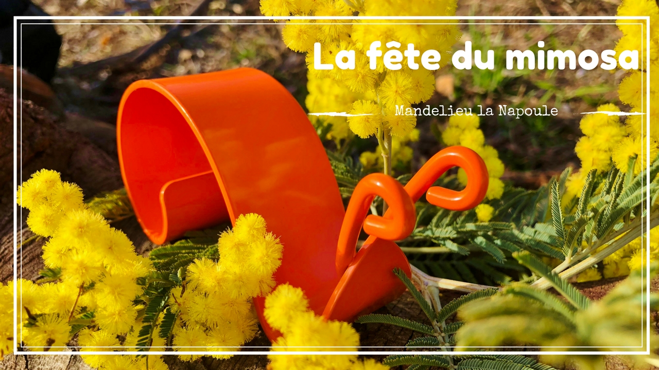 Mandelieu : La fête du Mimosa - Dreams World - Blog Voyage