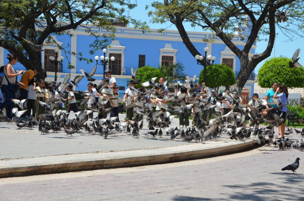 Mexique - Campeche - Dreams World - Blog voyage
