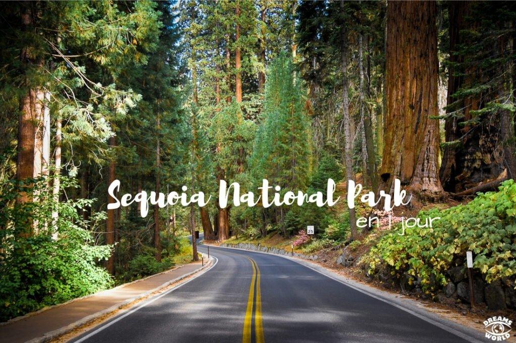 Visiter Sequoia National Park en 1 jour